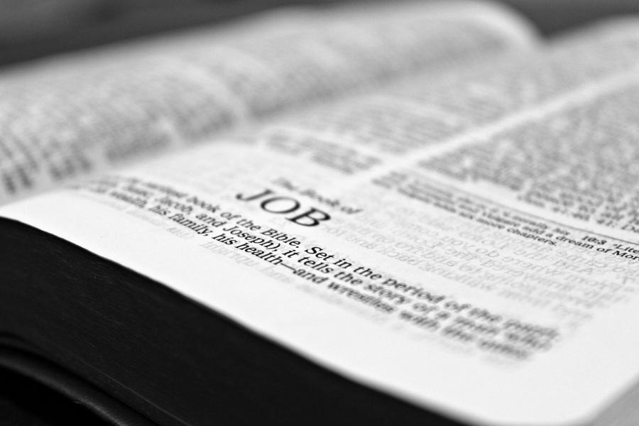 bible-job-reading-christianity-159679.jpeg
